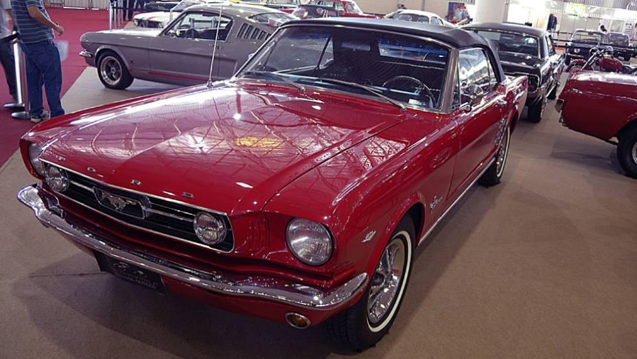 Ford Mustang Spyder 289