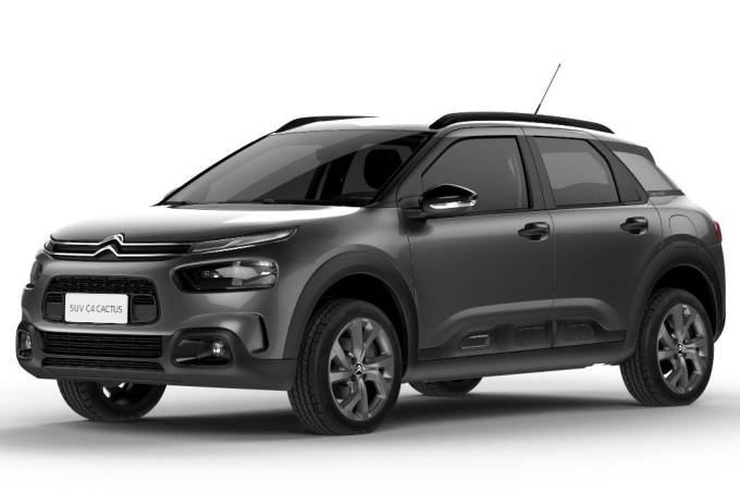 C4 Cactus Feel Business 2020 PcD