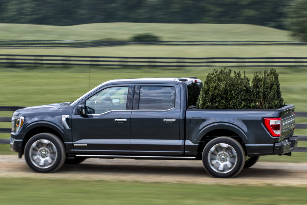ford_f-150_limited_supercrew_31_04b401a813290cd5.jpg