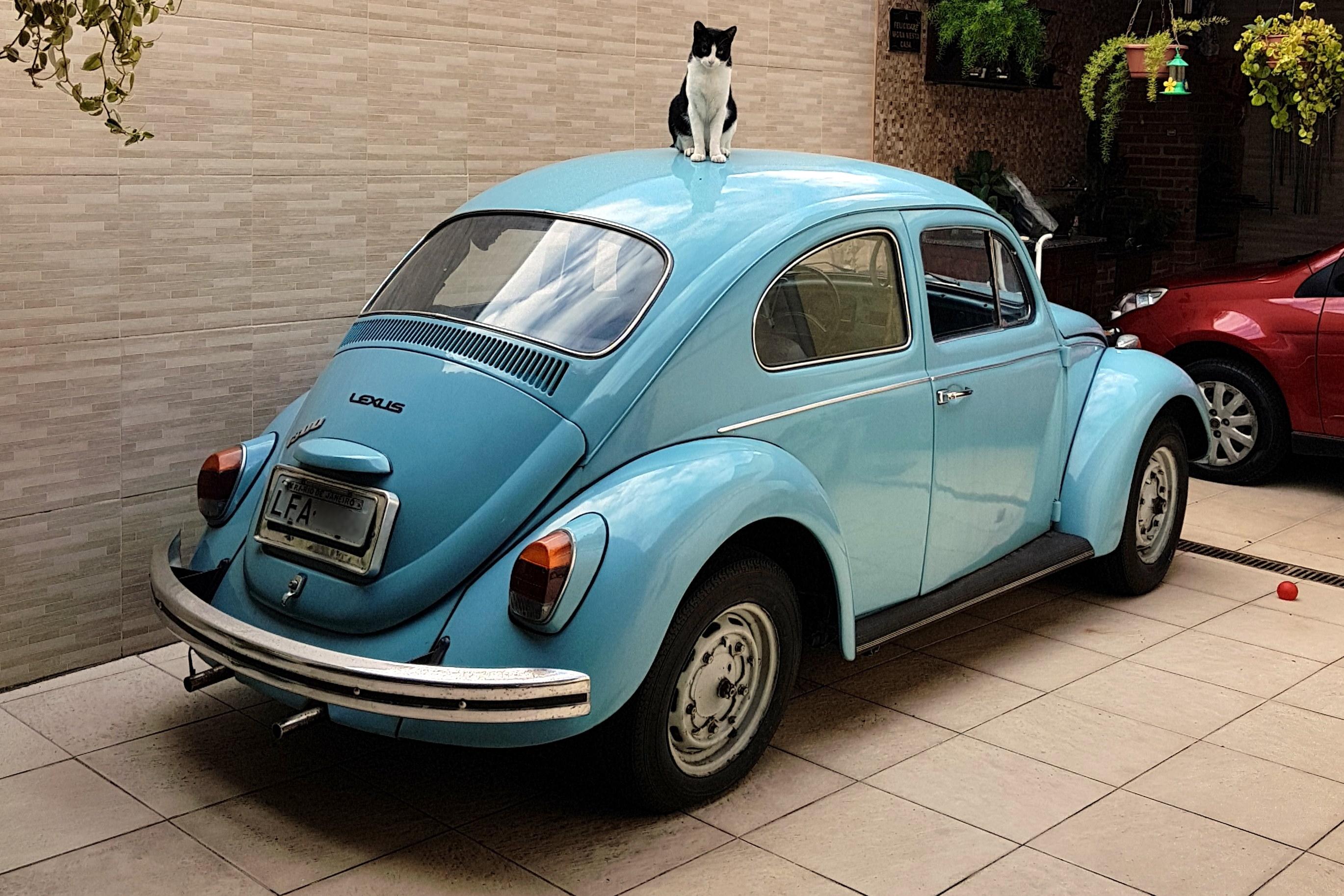 VW Fusca 1300 Standard 1973