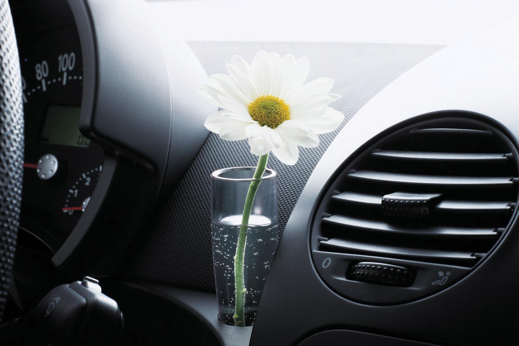 Vaso com flor no New Beetle